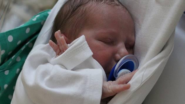 Adam Vainer se narodil 30. 4. 2018 v liberecké porodnici mamince Haně Poláškové z Liberce. Vážil 2,6 kg.