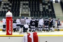 První trénink Bílých Tygrů na novém ledě Tipsport arény.