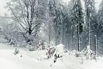 Duch zimy