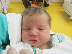 LAURA PAVLÍKOVÁ Narodila se 12. prosince v liberecké porodnici mamince Petře Makarovičové z Liberce. Vážila 2,83 kg a měřila 48 cm.