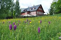 Liberecký kraj podpoří projekty na zadržování vody v krajině