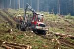 Ještěd. Kácení stromů na Skalce.