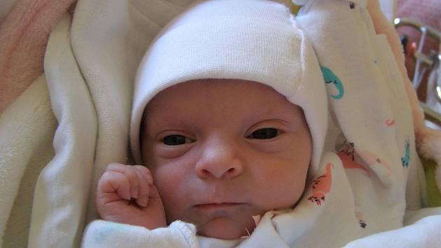 Silvie Kučerová se narodila 22. května v liberecké porodnici mamince Sylwii Paulusové z Liberce. Vážila 2,1 kg a měřila 47 cm.