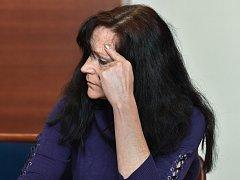 Obžalovaná v pašování textilu u soudu popsala fungování gangu.