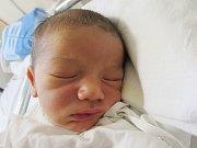 MATOUŠ DOLEČEK Narodil se 29. července v liberecké porodnici mamince Evě Dolečkové z Liberce. Vážil 3,33 kg a měřil 51 cm.