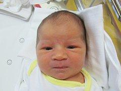 JASMÍNA PEŠKOVÁ Narodila se 10. října v liberecké porodnici mamince Janě Peškové z Hrádku nad Nisou. Vážila 4,29 kg a měřila 51 cm.