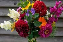 Pěstování květin se věnuje Květinová farma v Jindřichovicích pod Smrkem.