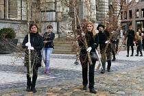 Občané z hnutí Extinction Rebellion upozornili na likvidaci českých lesů v důsledku klimatických změn.