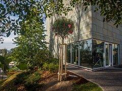 Strom na počest 85. výročí narození Olgy Havlové zasadili 26. září před Krajskou vědeckou knihovnou v Liberci.