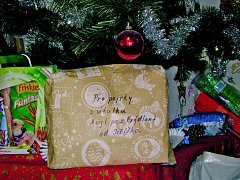 Vánoce v útulku Azyl Pes.
