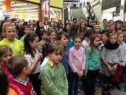 V Libereckém obchodním centru Forum si příchozí se sborem Ještěd a s Libereckým deníkem zazpívali v rámci akce Česko zpívá koledy. Stejná akce proběhne také letos.