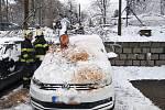 Popadané stromy zaměstnaly hasiče v celém kraji.