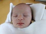 ELLEN MARHOULOVÁ Narodila se 4. října v liberecké porodnici mamince Janě Marhoulové z Liberce. Vážila 3,07 kg a měřila 50 cm.