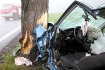 Řidička Fordu se při nárazu do stromu vážně zranila.