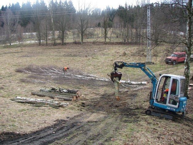 Kácení stromů mezi Jabloncem a Libercem kvůli plánované stavbě silnice.