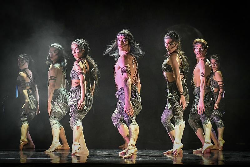 24. a 26. září bude mít dlouho očekávanou světovou premiéru taneční inscenace Mauglí v Šaldově divadle. K této příležitosti si Divadlo F. X. Šaldy připravilo dobrodružnou hru v Zoo Liberec o zajímavé ceny.