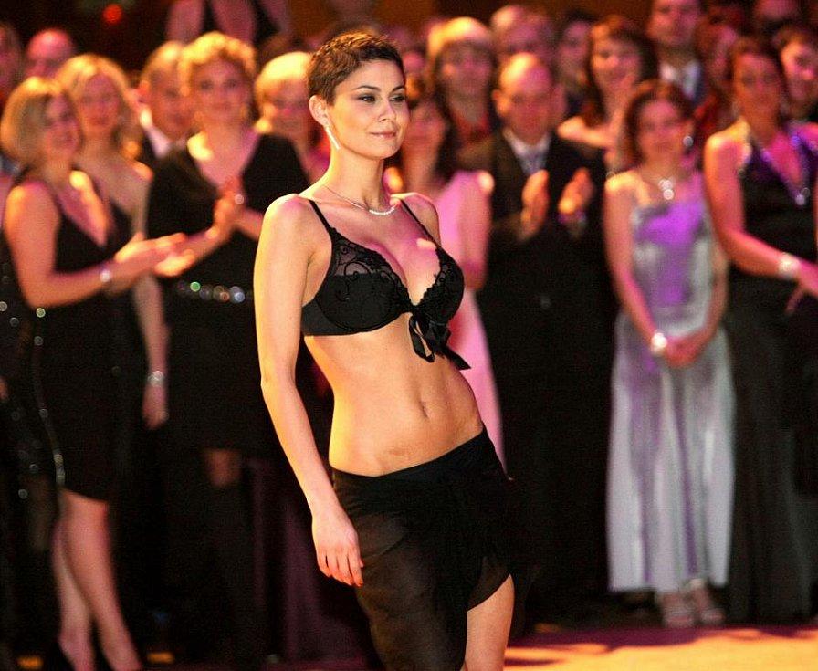 """Na jednom z nejprestižnějších plesů v Liberci, viděli návštěvníci módní přehlídku agentury Rea Models, show """"Mamma mia"""" s přední manekýnou a sexbombou Laďkou Erbovou, vystoupení cappoeristy Johna, zpěváka Michala Davida a další program."""