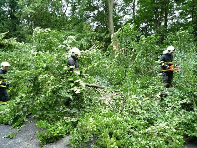 Bouřky lámaly stromy