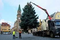 Frýdlantské náměstí zdobí vánoční strom.