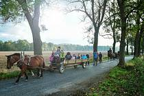 LOUČENÍ S ALEJÍ, kterou se kdysi proháněly kočáry, proběhlo stylově nechyběly koňské povozy a lidé v dobových kostýmech, kteří tak připomněli slávu těchto alejí.