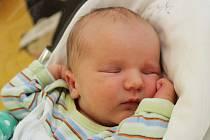 JAROSLAV LIŠKA Narodil se 25. února v liberecké porodnici mamince Lucii Liškové z Lázní Libverda. Vážil 3,43 kg a měřil 50 cm.