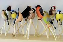 Pozoruhodnou řemeslnou výrobou se vrámci Libereckého kraje zabývá Marta Vrabcová Bayerová. Vytváří modely ptáků zovčího rouna, které jsou knerozeznání od živých zvířat.