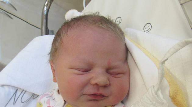 SÁRA SOUKUPOVÁ Narodila se 13. března 2018 v liberecké porodnici mamince Silvii Soukupové z Liberce. Vážila 4,22 kg a měřila 52 cm.