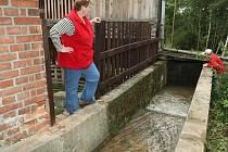 Do historického mlýnského náhonu po padesáti letech opět proudí voda.