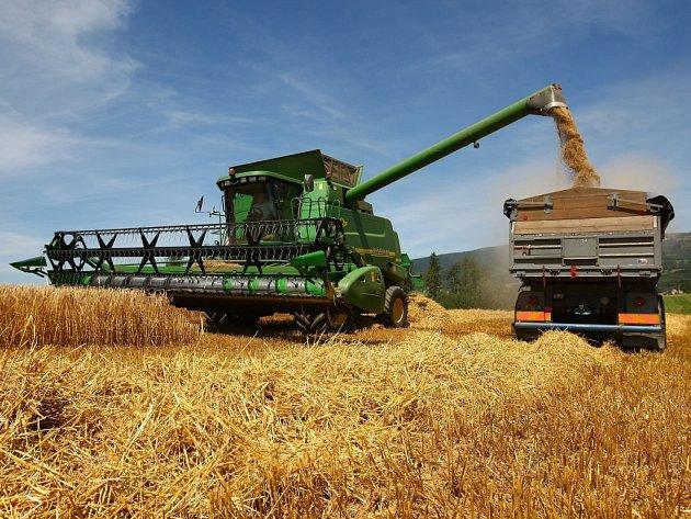 JEČMEN BUDE DOMA. Zemědělci z farmy Agro Bílá sklízejí na svých polích ozimý ječmen. V příštích týdnech je čeká ještě pšenice, žito a řepka.