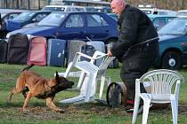 Soutěž psovodů na počest štábního praporčíka Tomáše Procházky