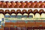 Čokoládový festival se letos koná v libereckém Centru Babylon.