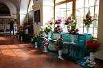V klášteře v Hejnicích se od 12. do 15. září koná mezinárodní výstava jiřin.