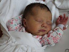 Mamince Paule Máslové z Liberce se dne 11. dubna v liberecké porodnici narodila dcera Emma. Měřila 47 cm a vážil 3,4 kg.
