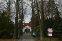 Osm lip srdčitých a dva smrky ztepilé na cestě ke hřbitovu ve Stráži nad Nisou čeká kácení.