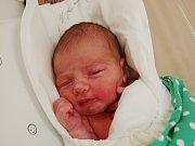 FRANTIŠEK POKORNÝ  Narodil se 21. prosince v liberecké porodnici mamince Janě Pokorné z Domašic. Vážil 3,69 kg a měřil 51 cm.