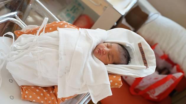 ESTER HUNKOVÁ Narodila se 16. října 2018 v liberecké porodnici mamince Denise Hunkové z Liberce. Vážila 3,60 kg a měřila 50 cm.