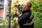 Vděčný pes s jedním ze svých zachránců.