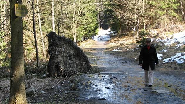 Bahnitá lesní cesta se v následujících měsících promění v důstojný vstup do lyžařského areálu na Ještědu.