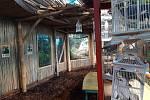 Rekonstruovaný pavilon tropů.
