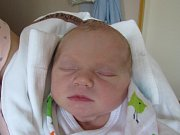 JITKA HAVRÁNKOVÁ  Narodila se 5. října v liberecké porodnici mamince Michaele Havránkové z Liberce. Vážila 3,03 kg a měřila 50 cm.