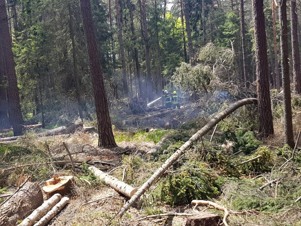 Požár lesního porostu v Kuřívodech.