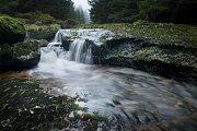 Potok Kamenice 1