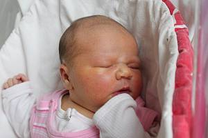 Anna Zdvořáková se narodila 28. listopadu v liberecké porodnici mamince Jitce Davídkové z Jablonného v Podještědí. Vážila 4,2 kg a měřila 52 cm.