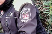 Městská policie Liberec, ilustrační foto.
