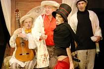 Studio Ypsilon vystupuje v libereckém Naivním divadle pravidelně a vstupenky na něj obvykle diváci rozeberou během několika dnů. Úspěch před časem sklidila u publika i komedie Ypsilonky Vdovou proti své vůli.