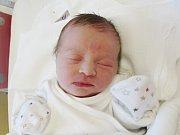 NELLA EGRTOVÁ Narodila se 5. dubna v liberecké porodnici mamince Simoně Kejhové z Turnova. Vážila 2,60 kg a měřila 48 cm.
