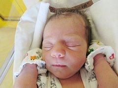 TEREZA HANZLÍKOVÁ Narodila se 27. července v liberecké porodnici mamince Zuzaně Řehákové z Liberce. Vážila 2,47 kg a měřila 45 cm.