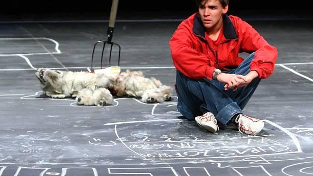 PODIVNÝ PŘÍPAD SE PSEM. V libereckém Malém divadle probíhají v těchto dnech intenzivní a náročné zkoušky na velice atraktivní představení.