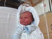 DAVID KOČÍ Narodil se 16. května v liberecké porodnici mamince Veronice Kočí Spanilé z Liberce. Vážil 2,93 kg a měřil 48 cm.