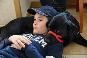 Třináctiletý Kája z Hrádku nad Nisou trpí jednou z poruch autistického spektra. Nějaký ten pátek mu dělá společnost čtyřnohý parťák Zoe, kterého rodina získala od neziskové organizace Pomocné tlapky.